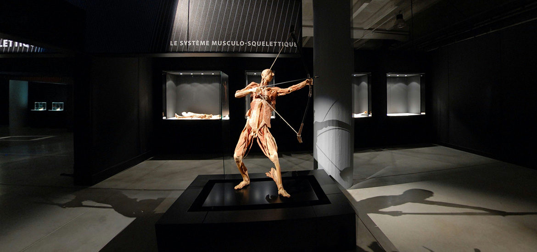 visite virtuelle exposition vrai corps humain