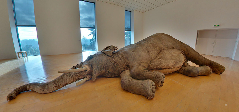 visite virtuelle expositions temporaires musée art contemporain Lyon